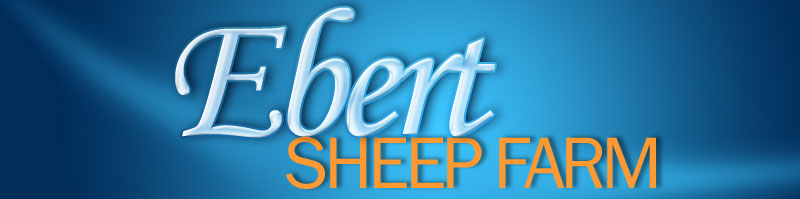 Ebert Sheep Farm